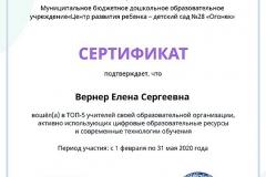 active_teacher_top_5_Verner-Elena-Sergeevna
