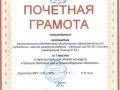 p33_skanirovanie0045